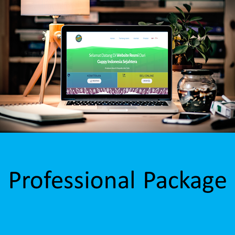 Jasa Web Design Professional Package