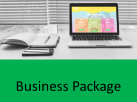 Jasa Web Design Business Package
